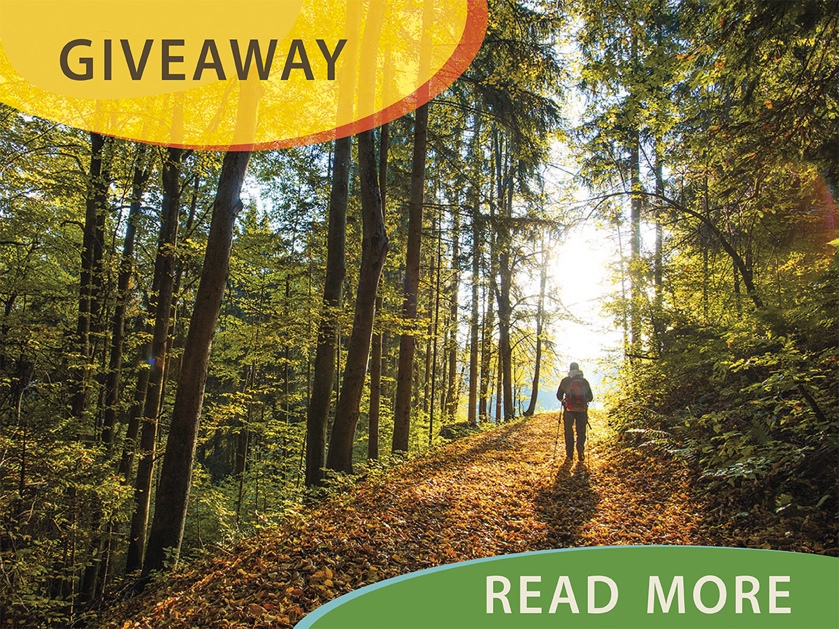 Take a photo of the forest and win a free Taste Radol'ca meal!