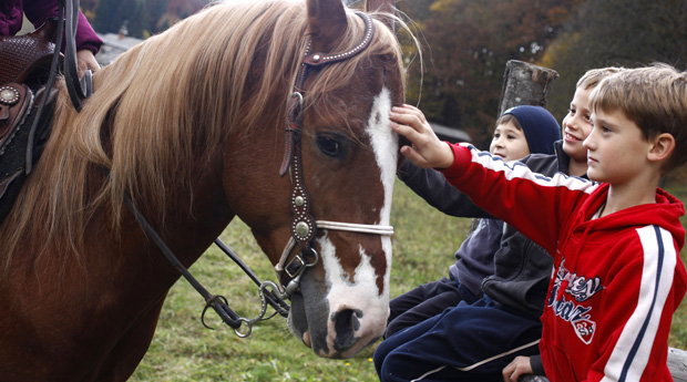 Horseriding experiences in the countryside