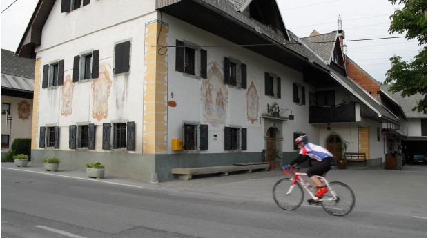 Road cycling through the surroundings of Radovljica
