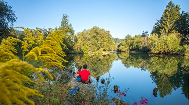 The confluence of the Sava river at Radovljica